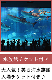 水族館チケット付き